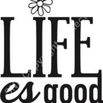 Life es Good Flower Thumbnail